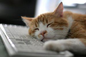 Sidebar] How to Resize a VirtualBox  vdi | Techbytes