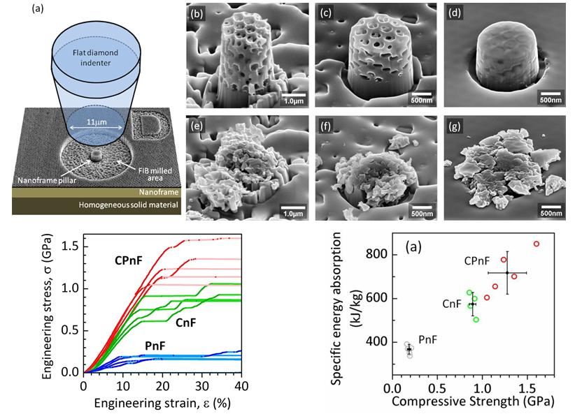 research01_nanoframes