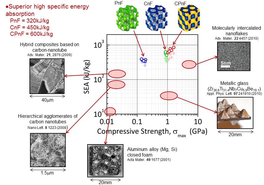 research01_nanoframes2