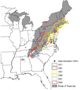 Map 1: U.S. Forest Service Forest Health and Protection's historical spread of HWA outlined in various colors and overlayed on native range of hemlocks shown as gray shading. (http://www.nrs.fs.fed.us/disturbance/invasive_species/hwa/risk_detection_spread/