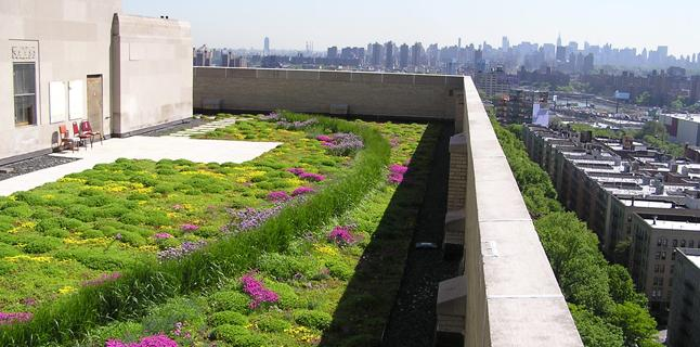 Green Roofs Effects On Urban Environments Debating Science