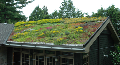 Green Roofs An Analysis On Air Pollution Removal And