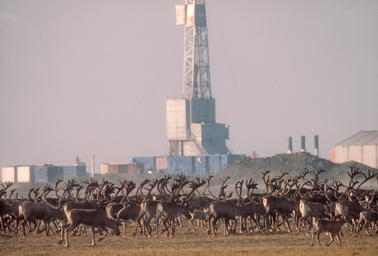 Arctic Refuge drilling controversy