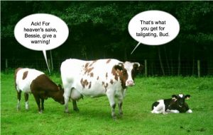 Reducing Cows Environmental Impact – Debating Science