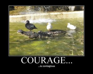 """Example of a motivational poster: Ducks on an alligator with text """"Courage is contagious"""""""