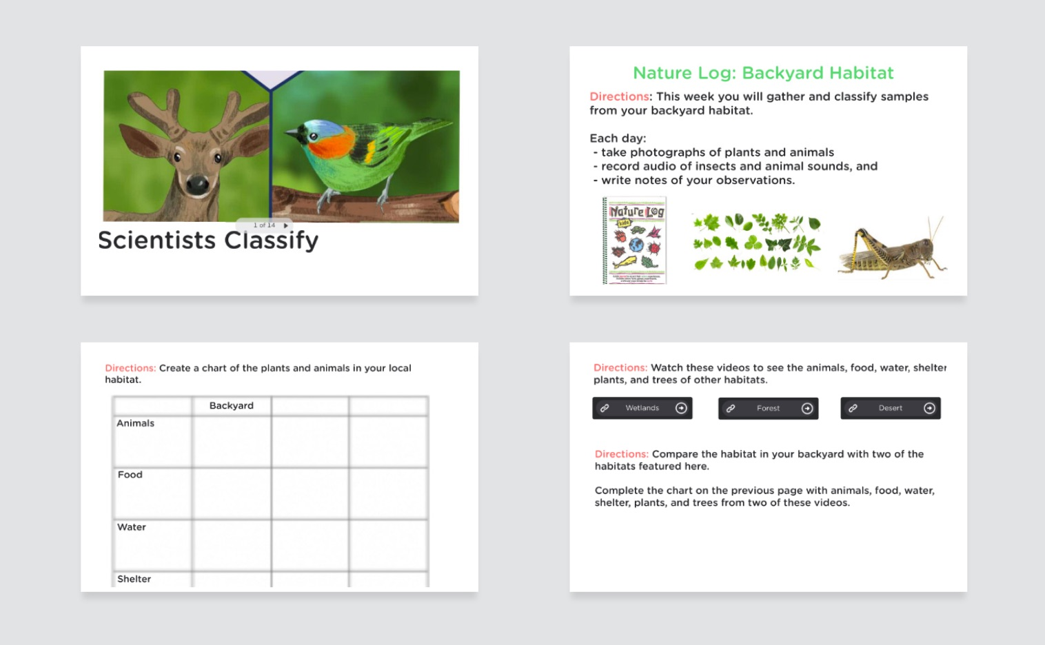 four slides from the scientists classify classkick lesson