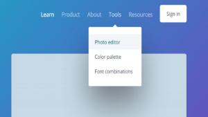 Screenshot of the photo editor tool in Canva