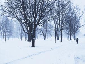Bowdoin in Winter